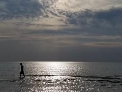Warren Dunes, MI (army.arch) Tags: warrendunes michigan mi statepark beach water lake lakemichigan