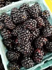Warren Dunes, MI (army.arch) Tags: warrendunes michigan mi statepark beach water lake lakemichigan blackberries