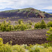 Craters of the Moon National Monument, Idaho-3512