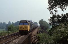 DROPPING DOWN THE BANK IN WORCESTERSHIRE (Malvern Firebrand) Tags: class50 50041 bulwark lickey vigo bromsgrove june 1982 1980s worcestershire blackwell rural countryside scenic scenery loco locomotive transport railways passenger train hoover 682 hospital sanitorium incline 50xxx englishelectric vehicles largelogo br