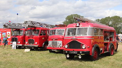 Fire engine line up (Duck 1966) Tags: fireengine weeting weetingsteamenginerally