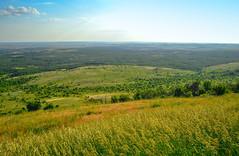 Steppes of Donbass. (denkuznets81) Tags: steppe landscape grass green nature sky donbass mound trees степь пейзаж природа лето донбасс саурмогила курган трава