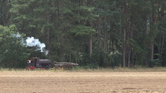 Wooden train (Duck 1966) Tags: timber train steam locomotive wagon weeting weetingsteamenginerally
