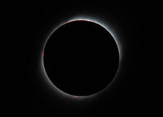 Red Prominences (MrBlackSun) Tags: prominences solar eclipse total solareclipse solarprominences nikon d810