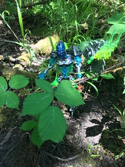 Welcome to the jungle (Armored Toa) Tags: lego bionicle gen2 reaper scythe general undead skeleton whirligig jigsaw