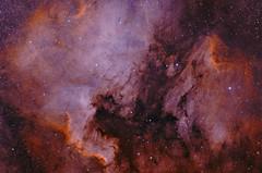 North American Nebula Bi-Color (Ha, Oiii) (rex.on.life) Tags: astronomy astrophotography nebula longexposure narrowband northamericannebula space universe stars zwo