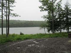 We're Camping So It's Raining (amyboemig) Tags: bowman lake state park ny newyork camping raining