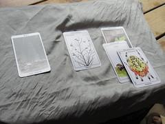 Cards (amyboemig) Tags: beth bowman lake state park ny newyork camping tarot cards