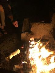 Roasting Marshmallows (amyboemig) Tags: camping july summer bowman lake state park ny beth marshmallow roasting toasting smores fire hand corinna peep