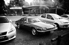 Jaguar XJS front (Matthew Paul Argall) Tags: zenit35f 35mmfilm blackandwhite blackandwhitefilm ilforddelta100 100isofilm car vehicle automobile transportation classiccar jaguarxjs