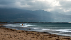 Sea horse (tonyguest) Tags: horse sea beach waves maharees brandonbay dingle ireland tonyguest sweden clouds overcast