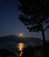 Moonset behind French Alps and Leman lake (Jacques Rollet (Little Available)) Tags: moonset france alpes alps léman leman lac lake night nuit ciel sky tree arbre water eau reflexion lune moon