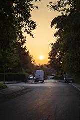 Sunset Street (*Photofreaks*) Tags: adengs wwwphotofreakseu essen ruhr ruhrgebiet deutschland germany nrw northrhinewestphalia nordrheinwestfalen schuir sunset sonnenuntergang dusk abenddämmerung street strase