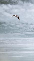 Изумрудное небо и серые  облака парашют (Nanaccept) Tags: серые облака небо голубой фон парашют изумрудный