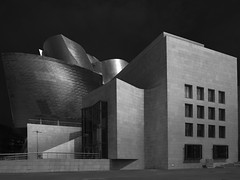 Guggenheim Museum #2, Bilbao, Spain (Thunderbird61) Tags: guggenheimmuseum bilbao baskenland spain architecture modernarchitecture frankogehry sw bw zw nb mono monochrome schwarzweis blackwhie zwartwit noirblanc neroyblanco nigeretalbus urbanculture culture mediumformat pentax pentax645z pentaxart
