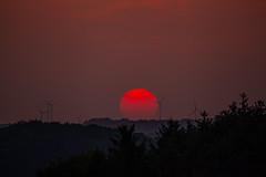 Sunset (Markus Branse) Tags: tags hinzufügen sunset darfeld rosendahl red orange rot gelb yellwo wald himmel sky sonnenuntergang sol sun star germany 20032015 2015 march märz frühling winter spring fog foggy nebel neblig hochnebel flugzeug fahrzeug outdoor lunar