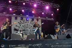 Allman Betts Band