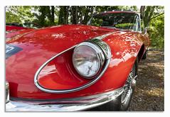 V12 a curvy lady. (johnhjic) Tags: johnhjic e type jag chrome red v12 classic car lady 1960 1960s style spoke spoked wheels tree trees headlight head light lines jaguar reflaction reflactions