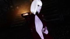 Edina Ferwind (XMymy007X) Tags: skyrim enb tesv lady sexy latex