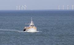 Tripping on Sea-Jay (Gill Stafford) Tags: gillstafford gillys image photograph wales northwales conwy llandudno boat seajay victorian summer resort fun pleasure tourists windfarm wind turbines electricity sea