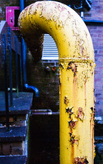 yellow swan (Mano Green) Tags: pipe rust decay industrial industry factory yellow paint swan bird neck kendal cumbria england uk october autumn 2016 canon eos 300 40mm lens kodak gold 200 35mm film colour epson perfection v550 curve