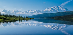 Denali Reflections (Paul Domsten) Tags: wonderlake denali reflections mountains trees water lake dnp denalinationalpark alaska blue clouds mtmckinley kantishnaroadhouse