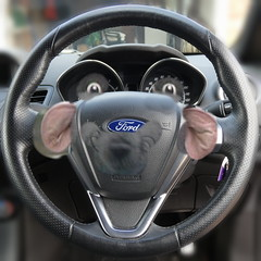 It's true!! (Les Fisher) Tags: imagine rolandrat ford fordcars steeringwheel wackyweekend makemesmile