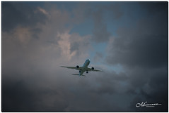 JULY 2019 NGM_2350_8932-1-222 (Nick and Karen Munroe) Tags: airplane airport aircraft airplanes aeroplane aeroplanes munroe pearsoninternationalairport karenandnick karenick karenick23 vriiyyzpiapearson karenandnickmunroe karenmunroe nick karen nickandkaren nickmunroe nickandkarenmunroe nature photography munroedesignsphotography munroedesigns munroenick munroephotoghrpahy landscape brampton ontario canada colour outdoors nikon d750 f28 ontariocanada 2470 2470f28 bramptonontario nikon2470 nikon2470f28 nikonf28 nikond750 cloud color colors clouds colours cloudy cloudcover