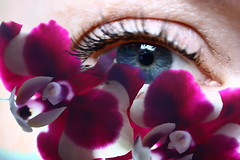 the beauty is in the eye of the beholder (°andre²a°) Tags: canon canoneosr 60mm abstract eye orchid flower flowers blue pink multiple exposure conceptional