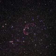 Cygus-Sadr Project - Panel 1 underway (Andy@astrophotography) Tags: cygnus canont3i losmandy crescentnebula ngc6888 astrophotography