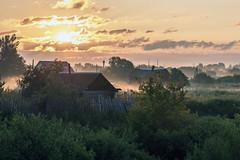 Morning in Savinskoe (gubanov77) Tags: savinskoe russia morning landscape sunrise fog village foggy dawn goldenhour