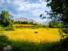 Paisajes del Pirineo (JoseCeb) Tags: olympus omd pirineos montaña paisaje 43 aragon huesca