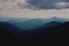 déjà vu V (Damla Özcan) Tags: nature trabzon zigana mountain landscape cow animal dreamy sky clouds blue color canon eos 5d mark ii 50mm f14
