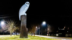 The Owl Statue on Monday morning (garydlum) Tags: owlstatue publicart canberra australiancapitalterritory australia