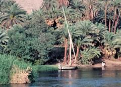 egypte_038 : le long du Nil, Egypte (pascalvu1) Tags: egypt film kodachrome nikonf eau transport
