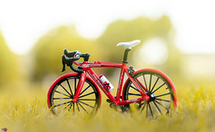BICYCLE 3 (Alan Piano Photography) Tags: sun street soft sky story sony straat beautiful foto fotograaf fine fiets alpha a7r3 a7riii camera city epe holland photo photography photoshoot red art bicycle test tamron testing toys