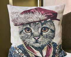 Royal Cat (monique.m.kreutzer) Tags:
