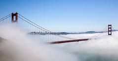 There's a bridge somewhere there. (Tall Guy) Tags: tallguy usa america california goldengatebridge sanfrancisco