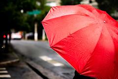 Vermelho (k.jessen) Tags: brasil chuva photowalk campobelo andrédouek fotojornada fotojornadacampobelo red brazil rain umbrella saopaulo sãopaulo vermelho guardachuva
