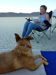 It's what we do out there (simonov) Tags: black rock desert playa bella dog hund chien 狗 σκύλοσ madra cane 犬 perro 개 سگ собака الكلب germansheprador ingrid woman