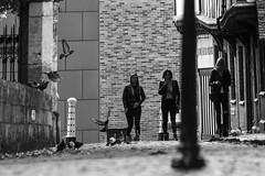 Street (lightersideofdark) Tags: blackwhite