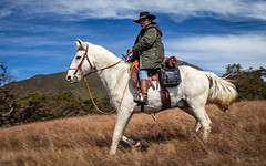 Cavaleiros (Ars Clicandi) Tags: bocainademinas minasgerais brasil brazil itatiaia parque nacional parnai national park montanha mountain cavalo cavaleiro horse