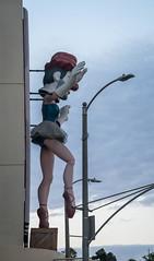Weird Balet Clown at CVS on Rose - Venice, CA (ChrisGoldNY) Tags: chrisgoldphoto chrisgoldny chrisgoldberg bookcovers albumcovers licensing sonyalpha sonyimages sonya7rii venice venicebeach losangeles california socal cali westcoast usa america