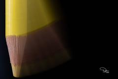 Yellow Movement (Diann McMillen) Tags: nikond750 tamron90mmmacro macromondays macro coloredpencil yellow madeofwood