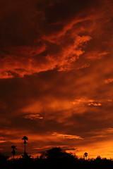Sunset 7 20 19 129 (Az Skies Photography) Tags: sun set sunset dusk twilight nightfall sky skyline skyscape rio rico arizona az riorico rioricoaz arizonasky arizonaskyscape arizonaskyline arizonasunset cloud clouds red orange yellow gold golden salmon black canon eos 80d canoneos80d eos80d canon80d july 20 2019 july202019 72019 7202019