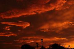 Sunset 7 20 19 126 (Az Skies Photography) Tags: sun set sunset dusk twilight nightfall sky skyline skyscape rio rico arizona az riorico rioricoaz arizonasky arizonaskyscape arizonaskyline arizonasunset cloud clouds red orange yellow gold golden salmon black canon eos 80d canoneos80d eos80d canon80d july 20 2019 july202019 72019 7202019