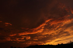 Sunset 7 20 19 115 (Az Skies Photography) Tags: sun set sunset dusk twilight nightfall sky skyline skyscape rio rico arizona az riorico rioricoaz arizonasky arizonaskyscape arizonaskyline arizonasunset cloud clouds red orange yellow gold golden salmon black canon eos 80d canoneos80d eos80d canon80d july 20 2019 july202019 72019 7202019