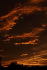 Sunset 7 20 19 093 (Az Skies Photography) Tags: sun set sunset dusk twilight nightfall sky skyline skyscape rio rico arizona az riorico rioricoaz arizonasky arizonaskyscape arizonaskyline arizonasunset cloud clouds red orange yellow gold golden salmon black canon eos 80d canoneos80d eos80d canon80d july 20 2019 july202019 72019 7202019