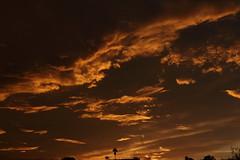 Sunset 7 20 19 081 (Az Skies Photography) Tags: sun set sunset dusk twilight nightfall sky skyline skyscape rio rico arizona az riorico rioricoaz arizonasky arizonaskyscape arizonaskyline arizonasunset cloud clouds red orange yellow gold golden salmon black canon eos 80d canoneos80d eos80d canon80d july 20 2019 july202019 72019 7202019