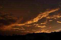 Sunset 7 20 19 074 (Az Skies Photography) Tags: sun set sunset dusk twilight nightfall sky skyline skyscape rio rico arizona az riorico rioricoaz arizonasky arizonaskyscape arizonaskyline arizonasunset cloud clouds red orange yellow gold golden salmon black canon eos 80d canoneos80d eos80d canon80d july 20 2019 july202019 72019 7202019